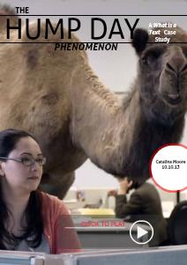 The Hump Day Phenomenon Case Study Presentation