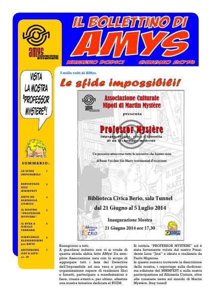 AMys - Bollettino Informativo N.12 Giugno 2014