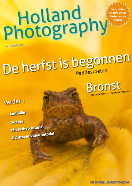 Dutch Nature Photography volume 1, herfst 2013