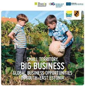 Small Territory, Big Business. Global Business Opportunities in South-East Estonia 2013