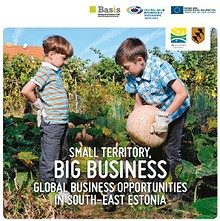 Small Territory, Big Business. Global Business Opportunities in South-East Estonia