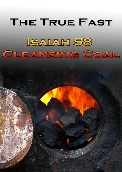 Cleansing Coal week 1