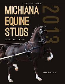 2013 Michiana Equine Studs
