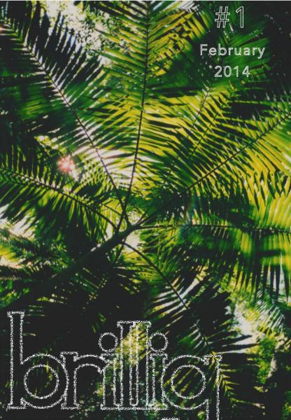 Brillig #1 February 2014