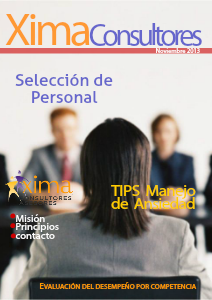 Xima Consultores Noviembre, 2013