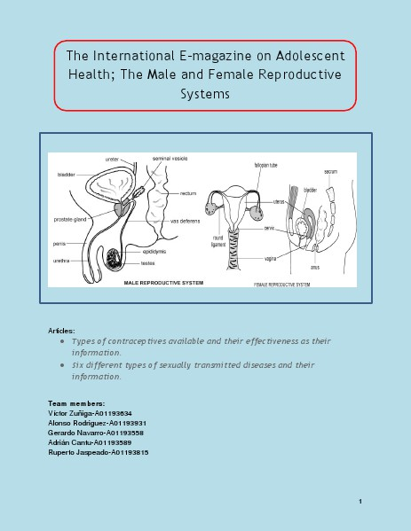 The International E-magazine on Adolescent Health; The Male and Female Reproductive Systems E-Magazine Reproductive System