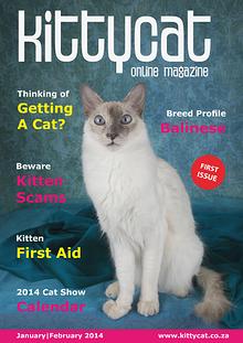 Kittycat Magazine