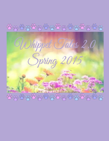 Whippet Tales 2.0- Spring of 2015 Volume 3