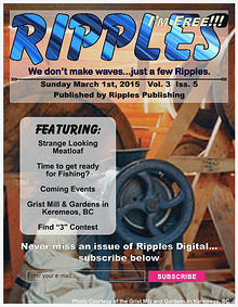 Ripples Digital