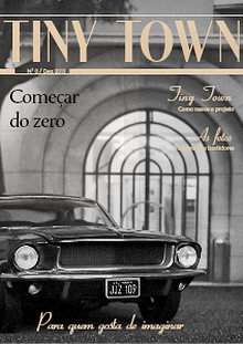 Tiny Town