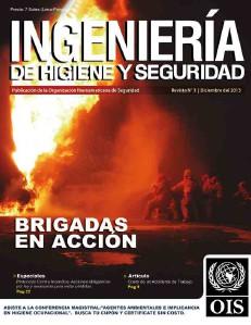 REVISTA INGENIERÍA DE HIGIENE Y SEGURIDAD (Dic.2013)