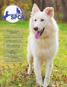 Washington County SPCA Newsletter