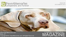 Paws4Memories Magazine